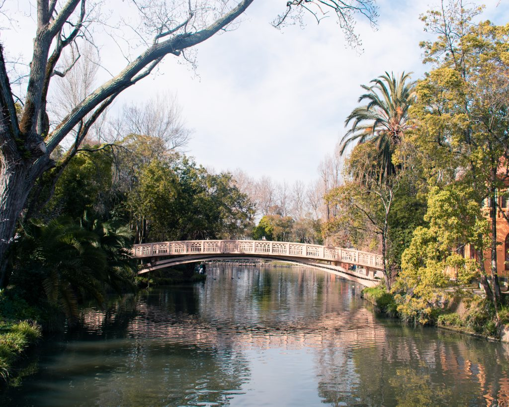 Jardins Parque D.Pedro