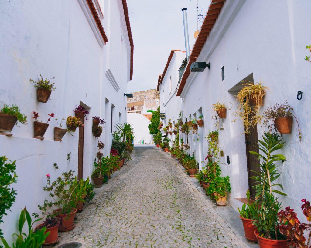 Pelas ruas floridas de Moura